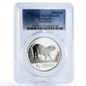 Indonesia 10000 rupiah World Wildlife Wild Pig PR67 PCGS proof silver coin 1987