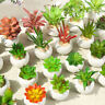 Mini Artificial Potted Succulent Plant Fake Small Bonsai Pot Home Garden Decor