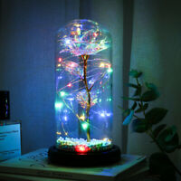 24K Gold Foil Rose Flower LED Luminous Galaxy Christmas Valentine's Day Gifts US