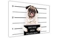 PUG BAD DOG POLICE LINE UP FRAMED CANVAS WALL ART PRINTS ANIMAL PICTURES FUNNY