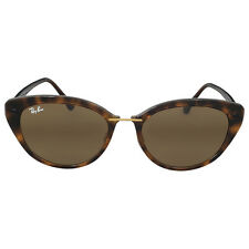 Ray-Ban Cat Eye Brown Classic B-15 Sunglasses