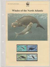 WWF 1990 Atlantic Whale Faroe Islands set, FDC, postcards & write up