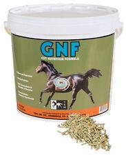 Gut nutrition formula for horses