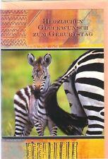 Klappkarte: kleines Zebra und Mutters Hinterteil - sehr hübsche Karte, de luxe