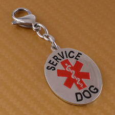 1Pc Silver Stainless Steel Medical Alert Service Dog ID Tag Charm Key Chain