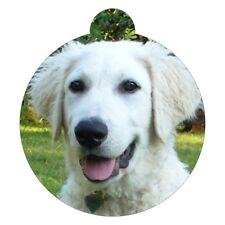 Kuvasz Dog Breed Picture Pet Id tag