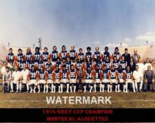 Cfl 1974 Montreal Alouettes Grey Cup Champs Team Picture Color 8 X 10 Photo Pic