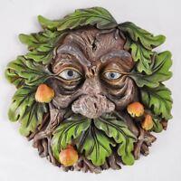 Tree Ent Face Wall Plaque Garden Greenman Decorative Gift Decor