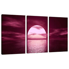 3 Part Plum Canvas Pictures Wall Art UK Living Room Sunset Prints 3004