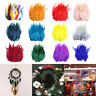 50pc Beautiful Rooster Pheasant Tail Feathers Costume DIY Decoration 5-7Inch