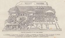 C2782 Spaccato prospettico di una Casa Romana - Stampa d'epoca - 1936 old print