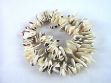 "12"" Strand Natural Shell Chip Beads Irregular Shape"