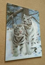 3D White Tiger Wall Art