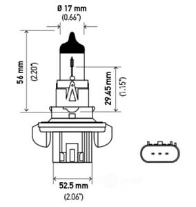 Dual Beam Headlight   Hella   H13