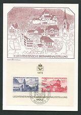 Liechtenstein MK 1972 pubblio blocco 9 maximum carta carte MAXIMUM CARD MC cm m128