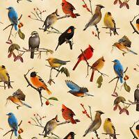 Fabric Birds Songbirds Allover Coordinate on Cotton 1/4 yard Elizabeth 1401E