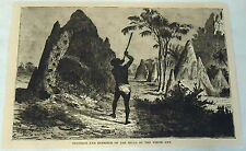 1883 magazine engraving ~ Interior & Exterior Of The Hills Of The White Ant