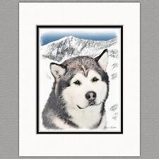 Alaskan Malamute Alaska Original Art Print 8x10 Matted to 11x14
