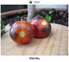 Tomate Wild blue - 40 semillas - var. tomate azul  - seeds
