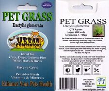 1 x PET GRASS Packet with Approx. 6,000 seeds (4 grams). YOUR PET WILL LOVE YOU!