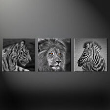 TIGER Leone Zebra SPLIT CANVAS Wall Art foto stampe GRATIS UK Affrancatura