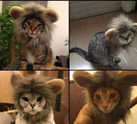 Furry Pet Hat Lion Mane Wig Cat Halloween Dress Up With Ears Festival