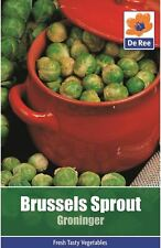 Brussel Sprout Groninger Vegetable Garden Seeds