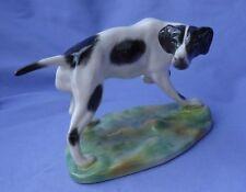 "German Shorthaired Pointer Richard Ginori hunting dog Italy 6"""