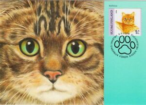 Domestic Cat Home Kitten Finland Mint FDC Maxi Card 2006