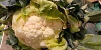 250 Graines de Chou Fleur Boule de Neige Potager Légumes