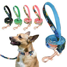 Nylon Dog Leash Belt Doggie Puppy Lead 5 FT Long Walking Pet Leashes 5 Colors