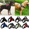 Heavy Dog Harness Soft Mesh Padded Extra Big Large Medium Small Dog Harness