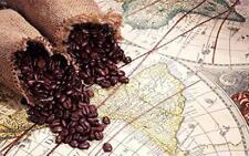 2 lbs Brazil Cerrado Arabica - Natural 17/18 Fresh Med/Dark Roast Coffee Beans