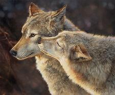 Bonnie Marris WOLF KISS giclee canvas #147/150