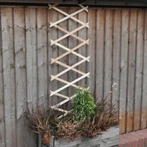 Expanding Wooden Garden Trellis 6FT x 1FT Wall Fence Panel Plant Climb Support