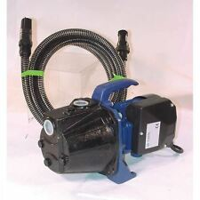 Pompe à eau electrique de surface 600W livré avec tuyau d'aspiration