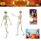 16 Inches Halloween Posable Skeletons Full Body Joints Hanging Home Decorations