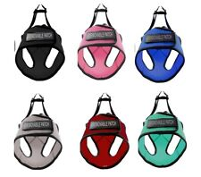 Boston Mesh Harness for Dog Built in Hook & Loop Fastener Super Soft XXS to XXL