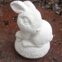 "Rabbit latex mold plaster rapid set cement all reusable mold 3"" x 2"""