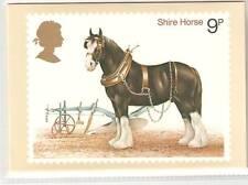 wbc. - GB - PHQ CARDS - 1978 - HORSES - COMP. SET MINT