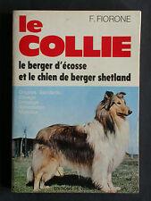 Collie Fiorone - Berger d'Ecosse Shetland Race - Vecchi Dressage Elevage Chien