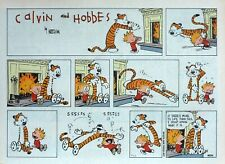 Calvin and Hobbes by Watterson - large half-page Sunday comic - April 24, 1994