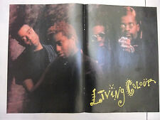 living colour poster