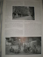 Photo article Falconry in Mongolia by Herbert G Ponting 1907 ref Y3