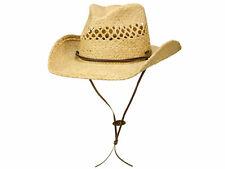 Stetson Larimore Westernhut Cowboyhut Strohhut