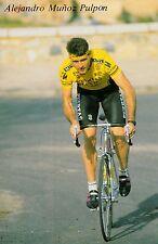 CYCLISME carte cycliste ALAJANDRO MUNOZ PULPON équipe PUERTAS MAVISA