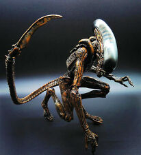 QUEEN Aliens Action Figurine 20cm (8in.) AVP Collectibles Statue