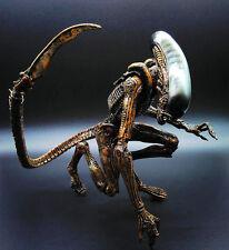 QUEEN Aliens Action Figurine 20cm (8in.) AVP Collectibles Statue