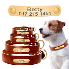 Leather Personalized Dog Collar with Engraved Gold Nameplate for Yorkshire Boxer