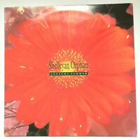 SHELLEYAN ORPHAN -Century Flower / 1989 Vinyl LP Album ROUGH 137 VG+/VG